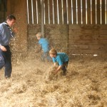 The apocalyptic straw fight
