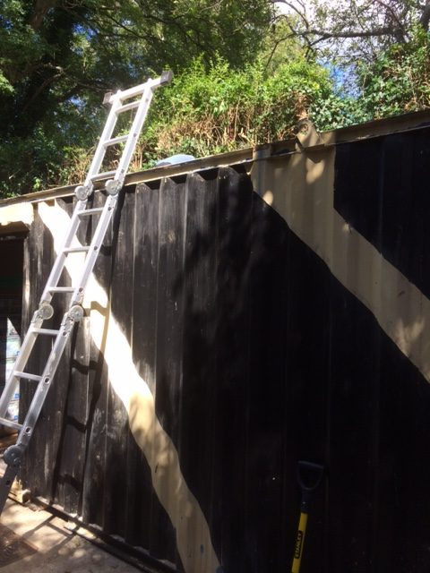 Ladder leaning against shipping container.